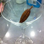 A cocoa pod awaiting its cocktail