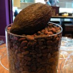 Cocoa Bean display in the centre of the shop