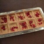 Cranberry pieces in chocolate mould