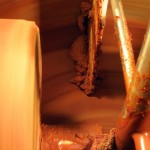 The Chocolate Tree - First View of Chocolate