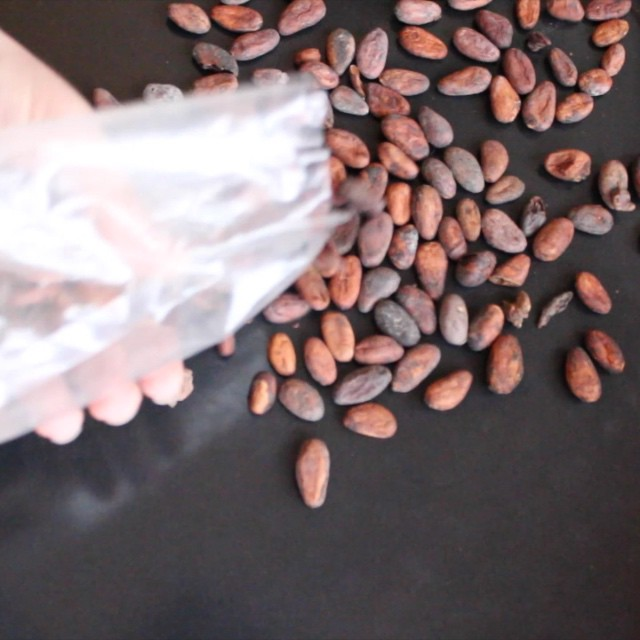 Making bean-to-bar chocolate at home in 30 seconds (Part 1)