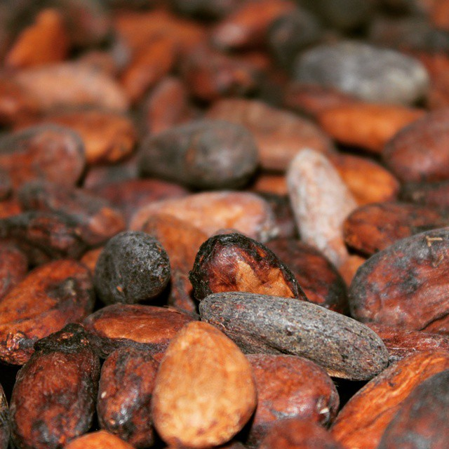 More cocoa beans have arrived. That means it's chocolate making time!