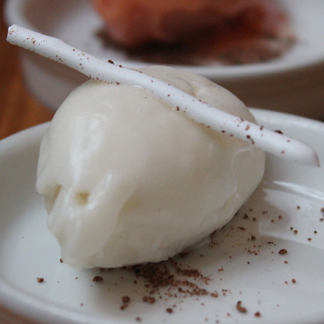 Cacao pulp & soursop sorbet. A little heavy on the soursop.