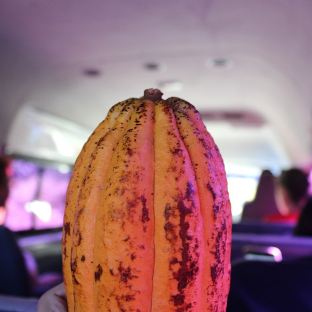 Home from the most amazing trip to Grenada. We packed so much in to one week and did many bumpy miles in our cacao filled bloggerbus. Can't wait to go back! #grenadacocoa #grenada #cacao #chocolate