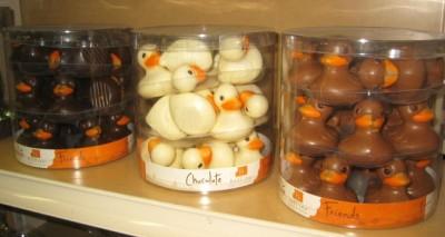 belfine-ducks