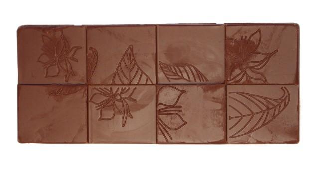 chocolate-tree-gianduja